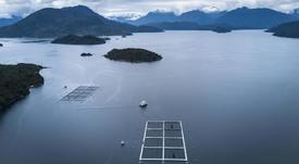 Presentan nuevo sistema automatizado de aireación y oxigenación para la salmonicultura chilena