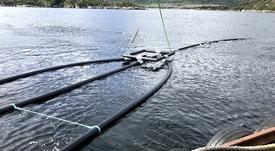 Lanzan tecnología para recolectar lodos en jaulas de cultivo de salmón