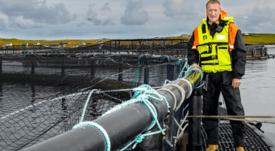 Scottish salmon sector seeks ever better sustainability