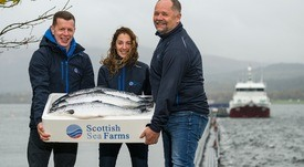Scottish Sea Farms increases Q4 earnings by 55%