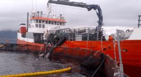Gobierno establecerá descansos diarios de 10 horas para dotaciones de naves
