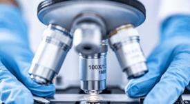 Definen científicos que integrarán los Comités Científicos de Acuicultura