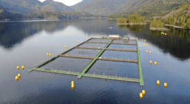 Loch Duart buys 'world's best' steel cages from Canada