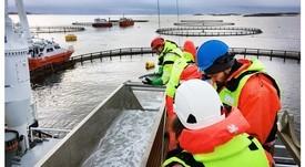 Jaula sumergible Atlantis muestra buenos resultados en crecimiento de salmones