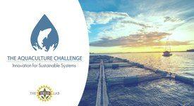 Organizaciones chilenas postulan a ocho cupos en The Global Aquaculture Challenge