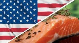 Analistas prevén recuperación de precios para salmón chileno en segundo semestre