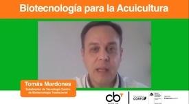 Expertos detallan aportes y desafíos de la biotecnología en salmonicultura