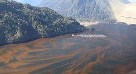 Establecen que fiordo donde opera la salmonicultura es una zona frágil ambientalmente