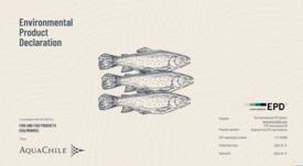 AquaChile realiza inédita Declaración  Ambiental de Producto para salmón