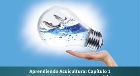 Comienza publicación de nuevo compendio enfocado en innovación y proveedores