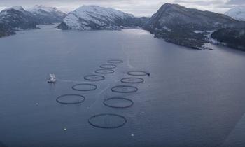 Startar havteknologi-studie i Florø