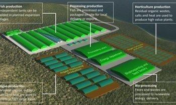 Foreign buyers eye Machrihanish RAS plant