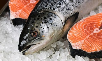 Salmon help push exports to £6 billion record