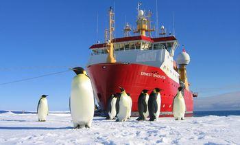 G C Rieber selger «Ernest Shackleton»