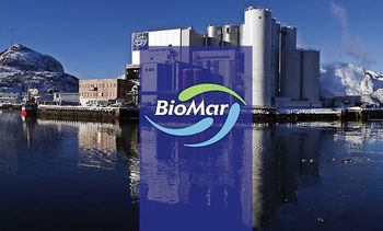 Tough salmon feed market pegs back BioMar earnings