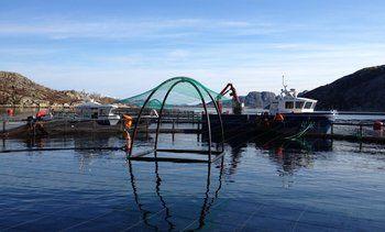 Oppdrettsbåt sank under operasjon