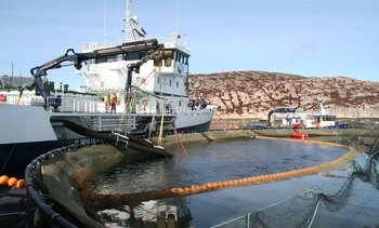 Brønnbåt-selskaper slipper straff for dumping av lusemidler