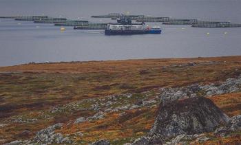 Ønsker norsk-russisk avtale om havbruk