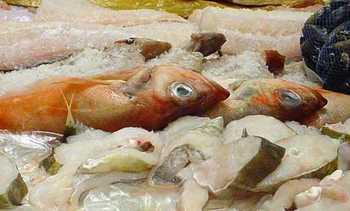 Få funn av uønskede stoffer i importert sjømat