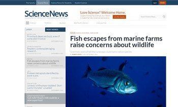 Stor internasjonal artikkel: Rømt fisk fra global akvakultur skaper bekymring hos forskerne