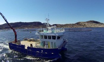 Bjørøya AS danner eget holdingselskap