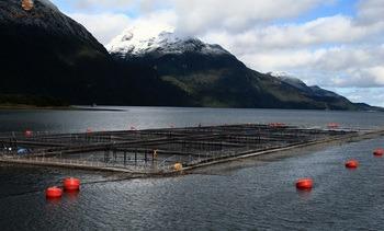 Octubre: SEIA aprueba un proyecto en Pesca y Acuicultura