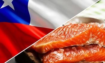 Exportaciones de salmón chileno baten nuevo récord