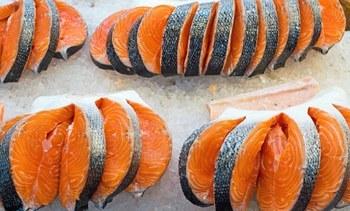 """Cargill Challenge"""" permitirá desarrollar soluciones en pro de la salud de salmones en cultivo"""