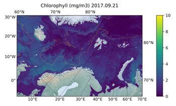 Desarrollan nuevo software para detectar Bloom de algas