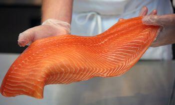 Sigue subiendo el precio del salmón noruego