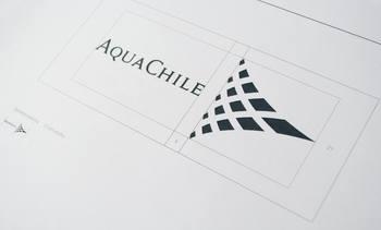 Reestructuración ejecutiva y reorganización en Aquachile
