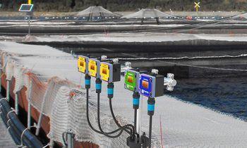 Innovex: soluciones tecnológicas para la industria salmonicultora