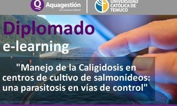Aquagestion y UCT lanzan diplomado e-learning en Caligidosis
