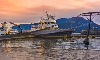 Marine Harvest Chile obtiene certificaciones internacionales por buenas prácticas productivas