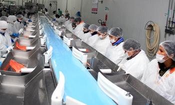 Gobierno impulsa proyecto para mejorar calificación de trabajadores