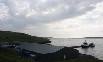Grieg stutters in Shetland