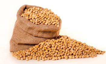 84 selskap støtter soyamoratoriet