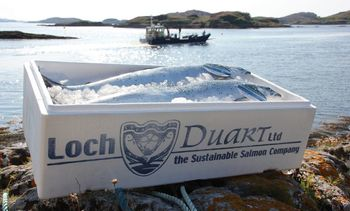 Loch Duart makes Rural Awards shortlist