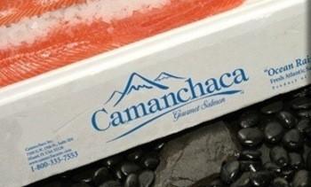 Utilidades de Camanchaca alcanzan US$ 31,7 millones en 2017