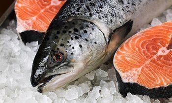 El salmón ayuda a impulsar exportaciones escocesas a un nivel récord