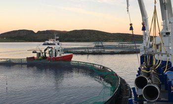 Bærekraftig omdømme for havbruksnæringen