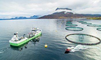 Stor vekst for Brønnbåt Nord
