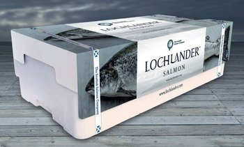 Scottish Salmon Company makes record Q1 revenues