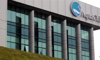 AquaChile økte fortjenesten med 37% i første kvartal