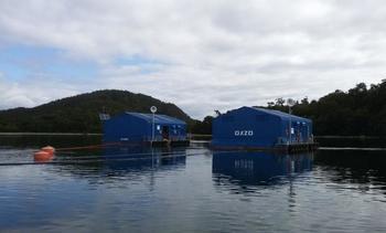 Oxzo suma a Tesacom para mejorar monitoreo remoto de oxigenación en Chile