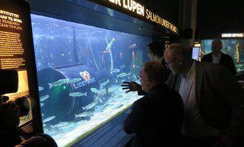 Den mekaniske leppefisken skal nå testes i sjøen