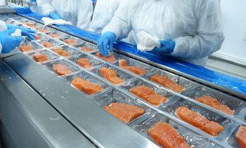 Humphreys mantiene clasificación de títulos accionarios de Australis Seafoods