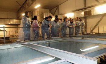 Junio: SEIA aprueba un proyecto en Pesca y Acuicultura