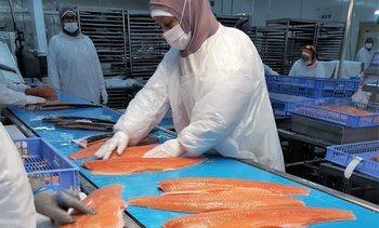 1 de cada 2 personas conocen la salmonicultura por sus trabajadores
