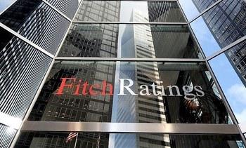 Fitch Ratings advierte debilitamiento de perfil crediticio de Agrosuper